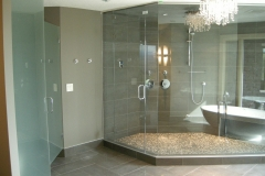 steam_shower_and_water_closet_door