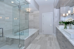 frameless shower door 4