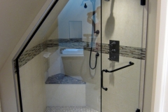 frameless shower door 10