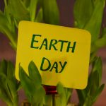 Happy Earth Day from House of Mirrors! - House of Mirrors - Mirrors and Glass Calgary - Featured Image